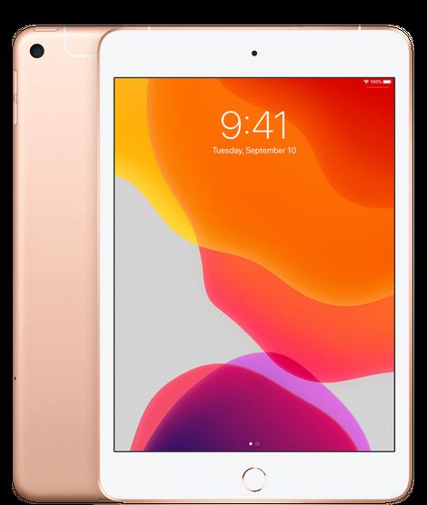 iPad mini (7.9-inch) (5th generation) - 256 GB - (Wi-Fi + Cellular) - Goud (Nieuw)