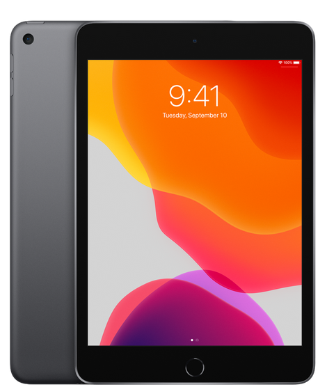 iPad mini (7.9-inch) (5th generation) - 256 GB - (Wi-Fi + Cellular) - Spacegrijs (Nieuw)